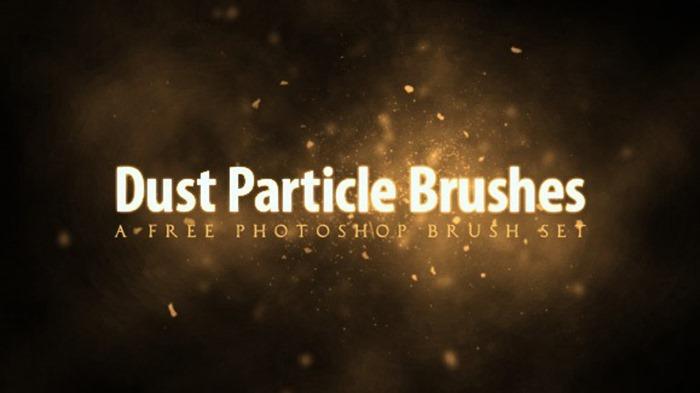 Dust Particle Brush Set