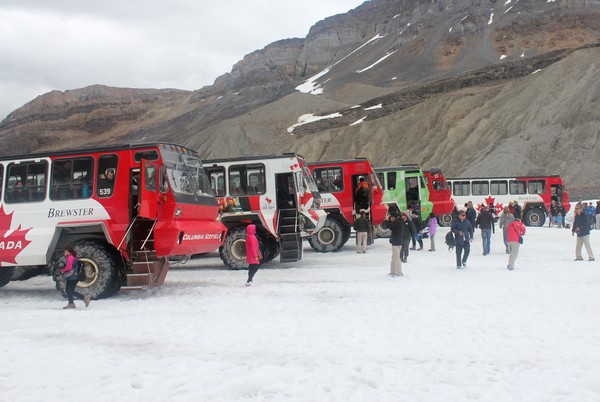 Athabasca Glacier Tour, Jasper, Alberta