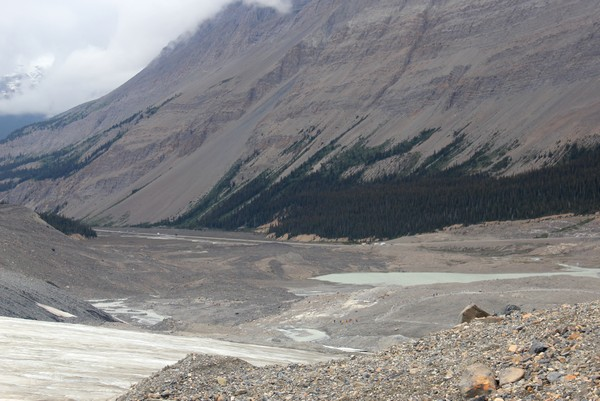 Athabasca Glacier, Jasper, Alberta