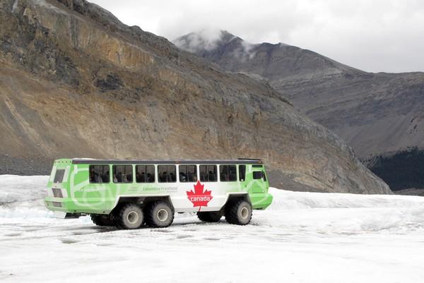 Ice Explorer, Columbia Icefield Glacier Adventure, Alberta