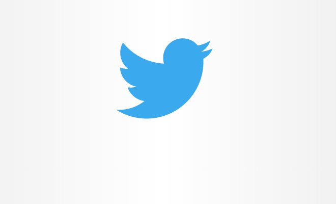 pure css svg twitter logo