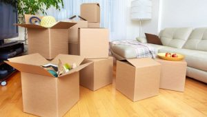 local-packers-and-movers-pune-300x170-b492ab5e