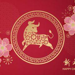 lunar-new-year-2021-year-ox-